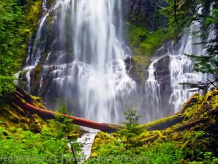 Photo Trex: Proxy Falls
