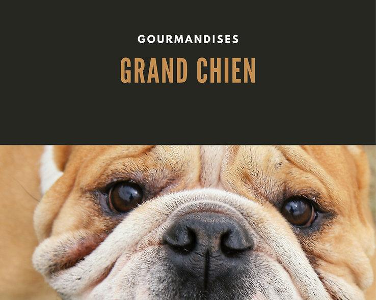 Gourmandises pour grands chiens