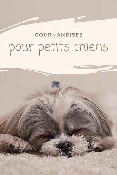 Gourmandises pour petits chiens