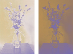 diptych of flowers