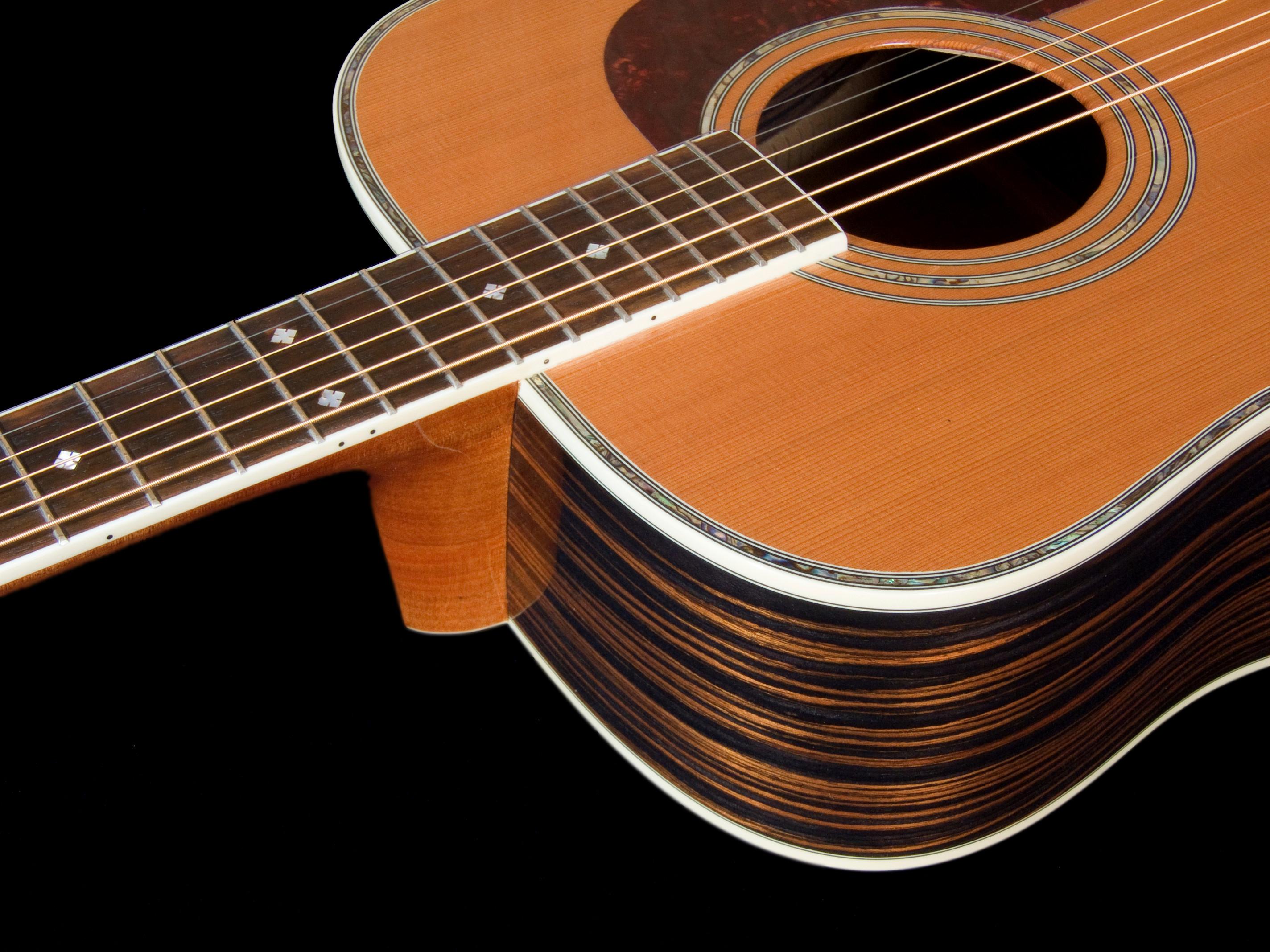 Guitar (Electric / Acoustic)
