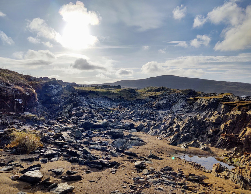 Holiday Homes Islay - Goat