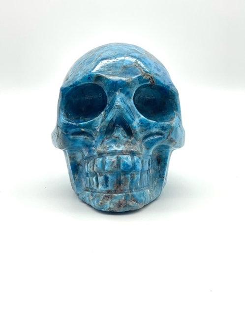 Blue Apatite Skull