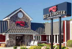 Red Lobster | Florida