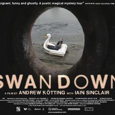 Swandown