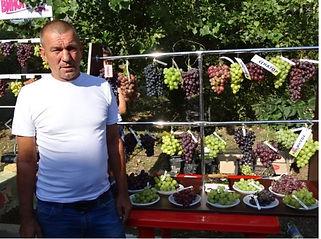 Павловский Е Г селекционер гибридных фор