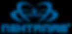 logo-rfom-site2.png
