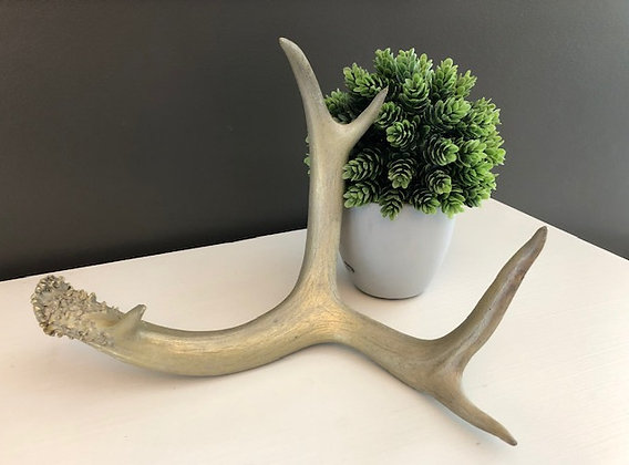 Single Gold Antlers