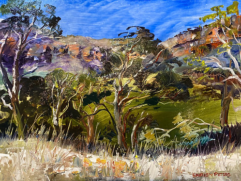Megalong in the Afternoon