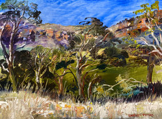 Megalong in the Afternoon Sun $440