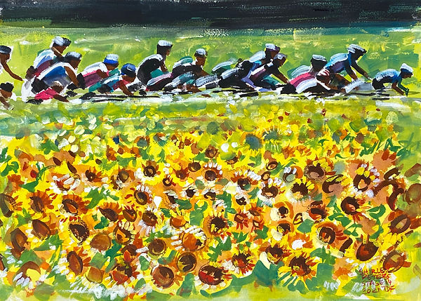 Stage 14- Sunflowers in the Valley.jpg