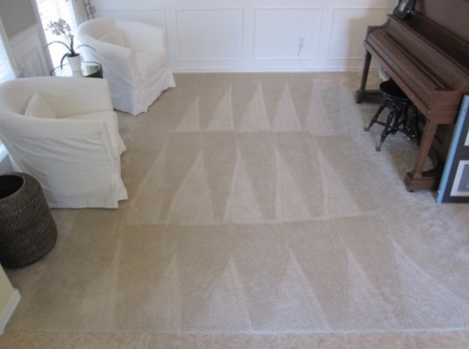 Perfectly Vaccumed Carpet using Nap