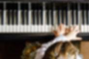 bigstock-Cute-Little-Girl-Playing-Grand-