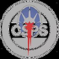 csps - Matt Harrison.png