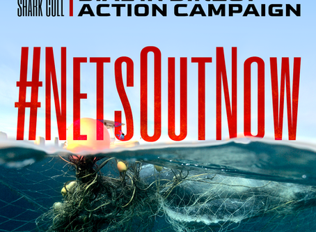 #NetsOutNow Call to Action