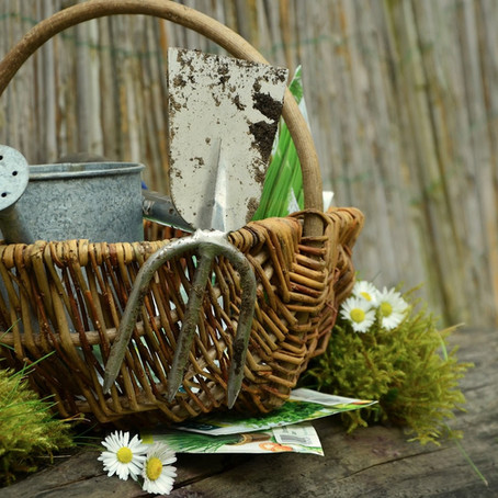 Springtime is Gardening Time