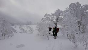 真っ白な深雪と美しい樹氷の朝里岳