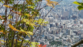 札幌近郊の山を楽しむ。藻岩山