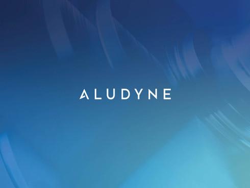 Aludyne Rebrand