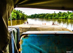 View of the Amazon River, A2A