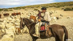 Gauchos, A2A Expedition
