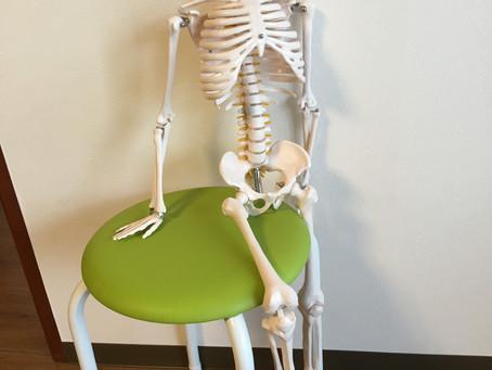 体幹から膝・過伸展が