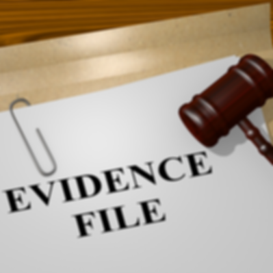 Evidence File.png