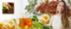 SM curso de saúde da muler medicina natural plantas medicinais e fitoterapia