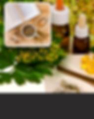 Curso de materias-primas da fitoterapia. Oaluno vais aprender tuddo sobre plantas medicinais e materias-primas dasterapias alternativas e medicna natural.