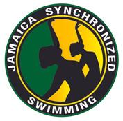 synchro logo.jpg