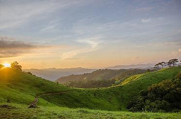 paysage soleil couchant sur montagnes et arbre