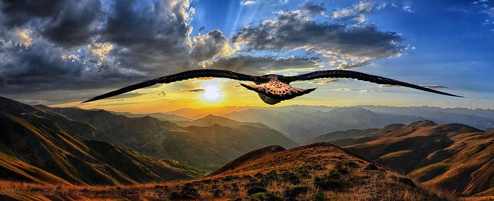 aigle planant dans le ciel au dessus des montagnes et en directiond du soleil couchant, objectif, accompagnement global, accompagnement holistique, approche combinée, sonothérapie, naturopathie, fleurs de bach, Liberté, progressivité Programme global, rythme Cadre confidentiel, confidentialité, sécurité, sécurisé Autonomie, responsabilisation Écoute empathique, empathie, bienveillance, bienveillant Besoins, sentiments, demandes, CNV, communication non violente EFT, emotional freedom technique Echanges, interaction Guidance intuitive, guider, intuition Se connecter, connexion, pouvoir intérieur, intériorité, liberté, libre, être Humanité, humains Authenticité, profondeur, relation de confiance