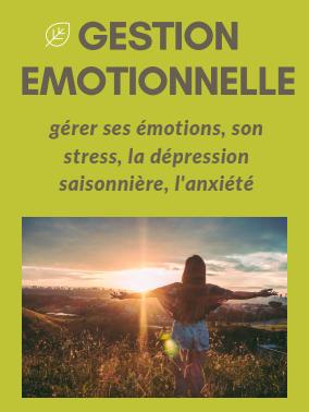Gestion émotionnelle : gérer ses émotions, son stress, la dépression saisonnière, l'anxiété