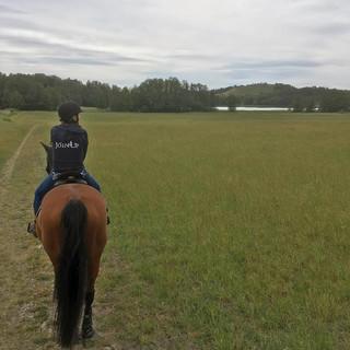 Långtur på häst idag 🐴out for a long ri