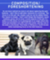 COMPOSE_TIP.jpg