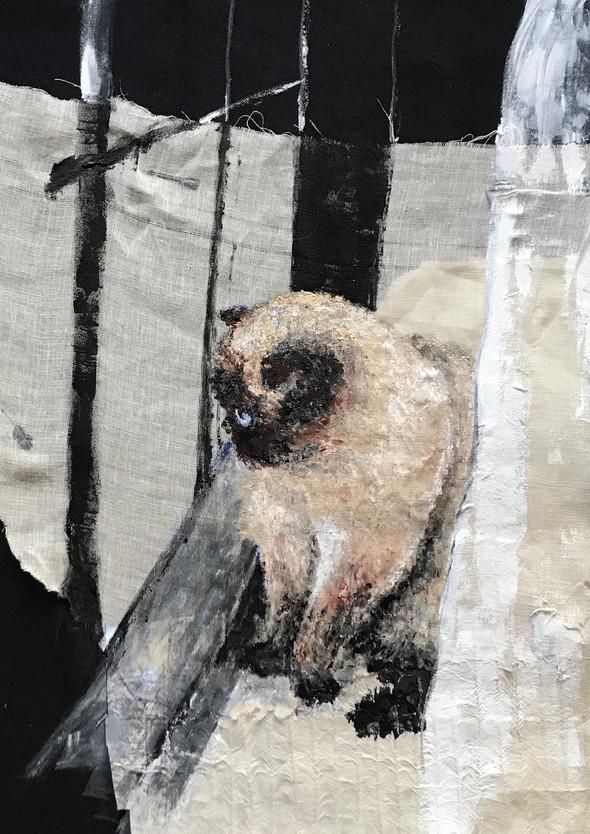 Cat #1 | Acrylic