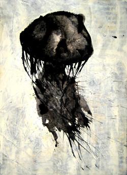 Medusa negra, 2016