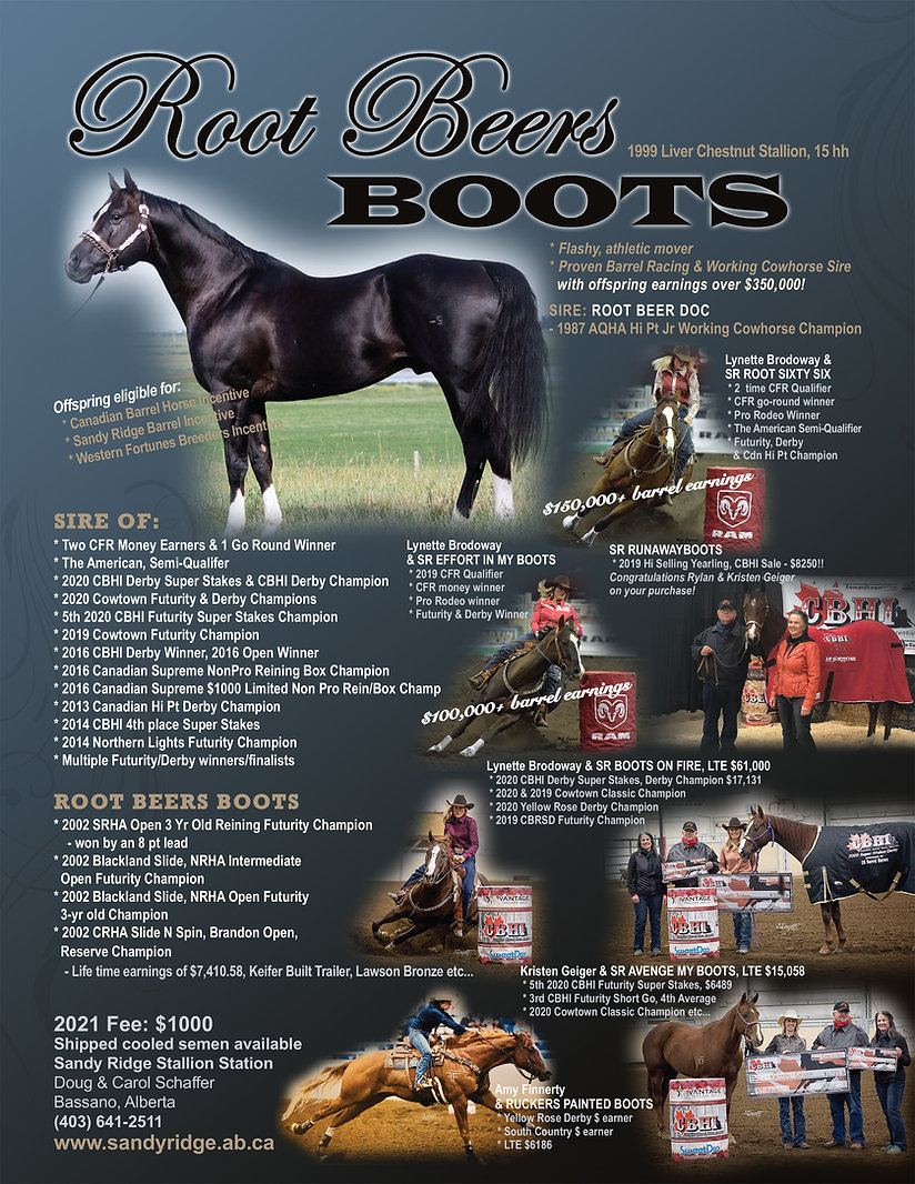 Rootbeers-Boots-poster-2021.jpg