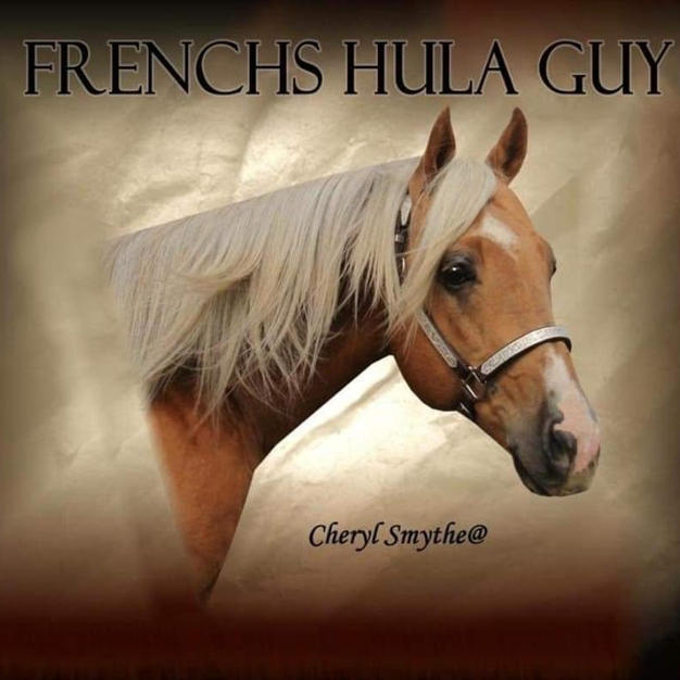 Frenchs Hula Guy