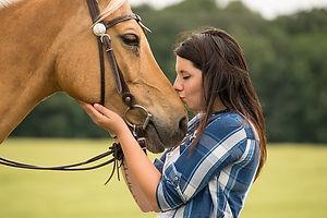 horse-3449616_640.jpg