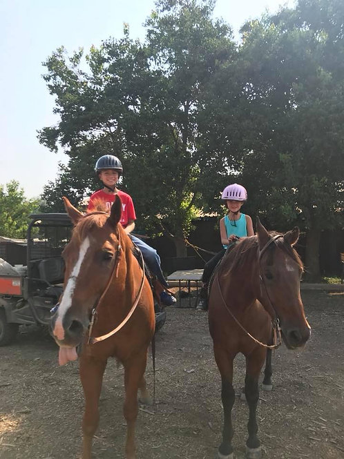 Group Riding Lessons (more than one rider-price per rider)