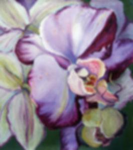 Luba_Sterlikova_Orchids_oilPastel.jpg