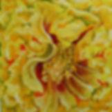 Yellow_Peony.jpg