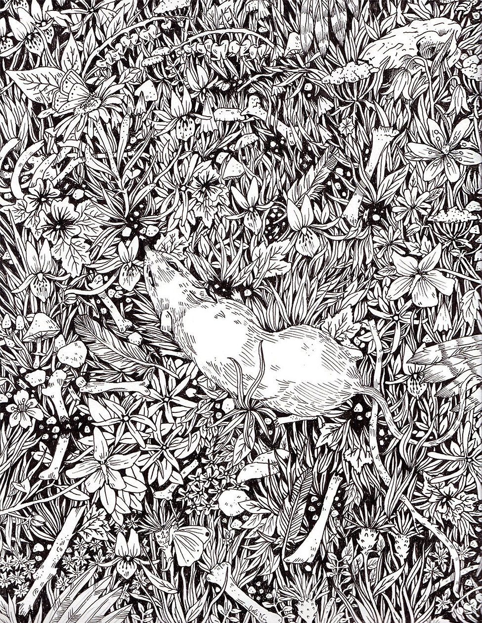 Black and white illustration of rat scurrying through plants and broken bones