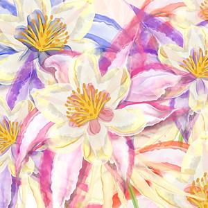 Starlene Designs - Florals