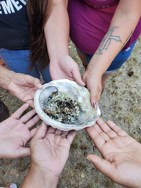 All hands on abalone shell.png