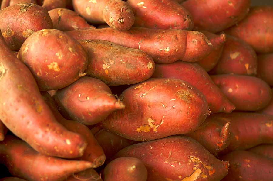 Common Garnet-Yams.jpg