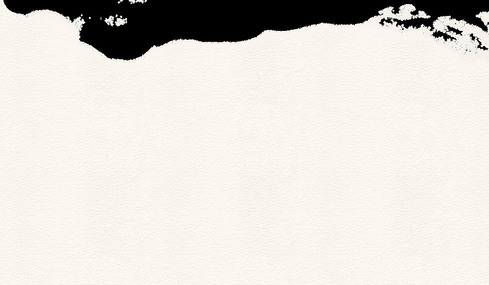 BG-white_new.png