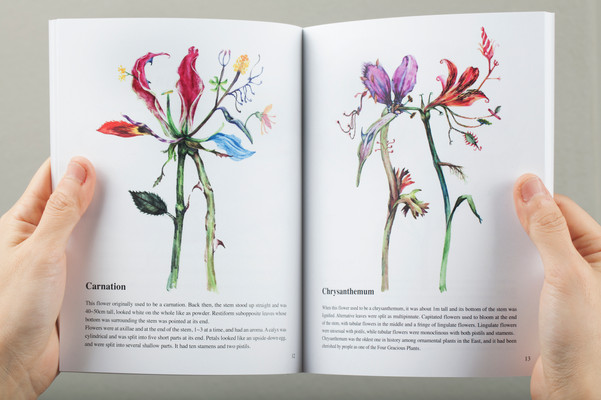 Illustrated Book of Hybrid Flowers Page 12-13