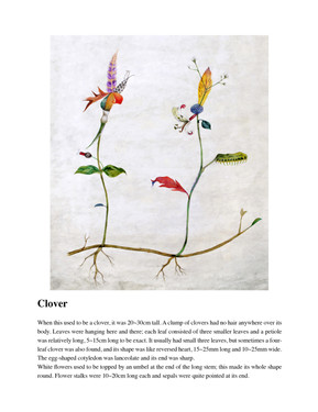 Illustrated Book of Hybrid Flowers_Clover